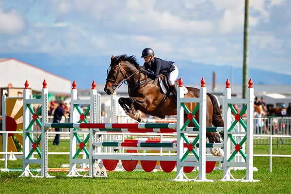 Tokyo Hopefuls takes their hat off to Bundy in the Land Rover Horse of the Year Four Star